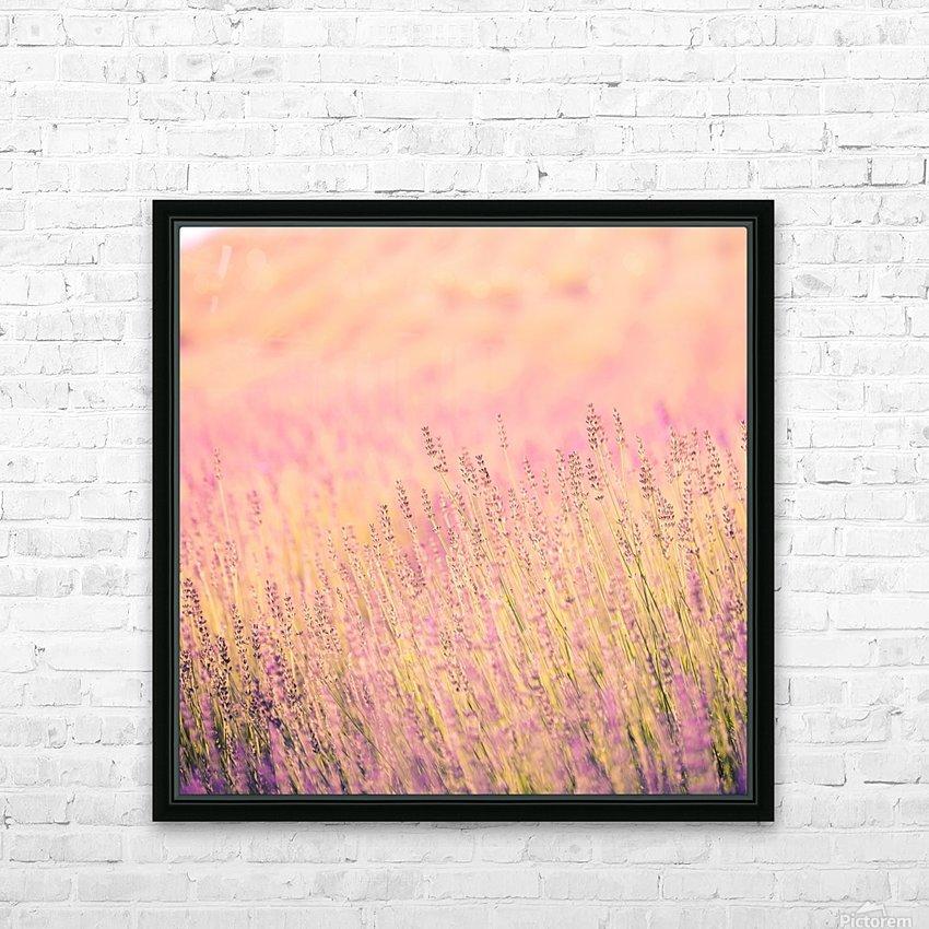 Sunset lavender flowers, instagram effect HD Sublimation Metal print with Decorating Float Frame (BOX)