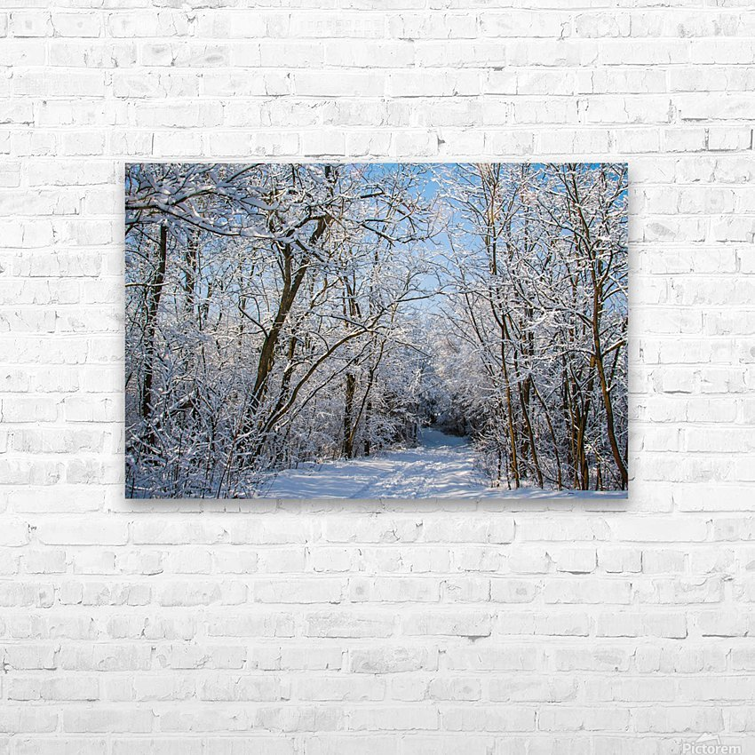 Forest covered with snow HD Sublimation Metal print with Decorating Float Frame (BOX)