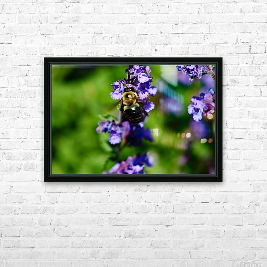 Bumbling Bee 2 HD Sublimation Metal print with Decorating Float Frame (BOX)