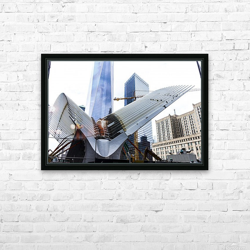 Steel Chicks and the High Rise Hen HD Sublimation Metal print with Decorating Float Frame (BOX)