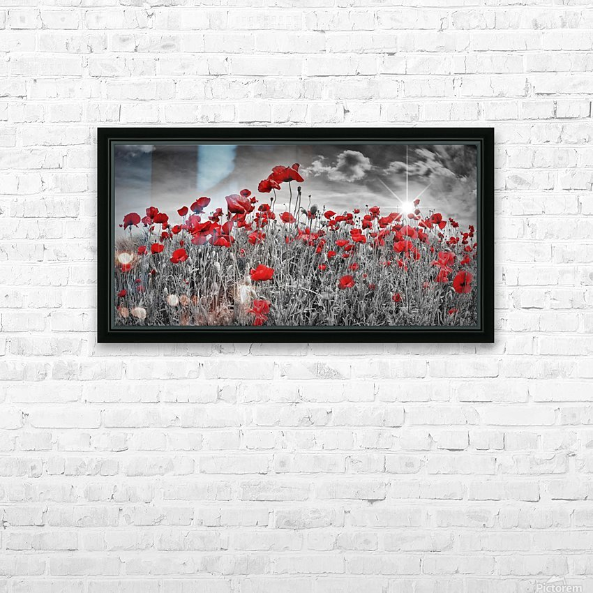 Idyllic Field of Poppies with Sun HD Sublimation Metal print with Decorating Float Frame (BOX)
