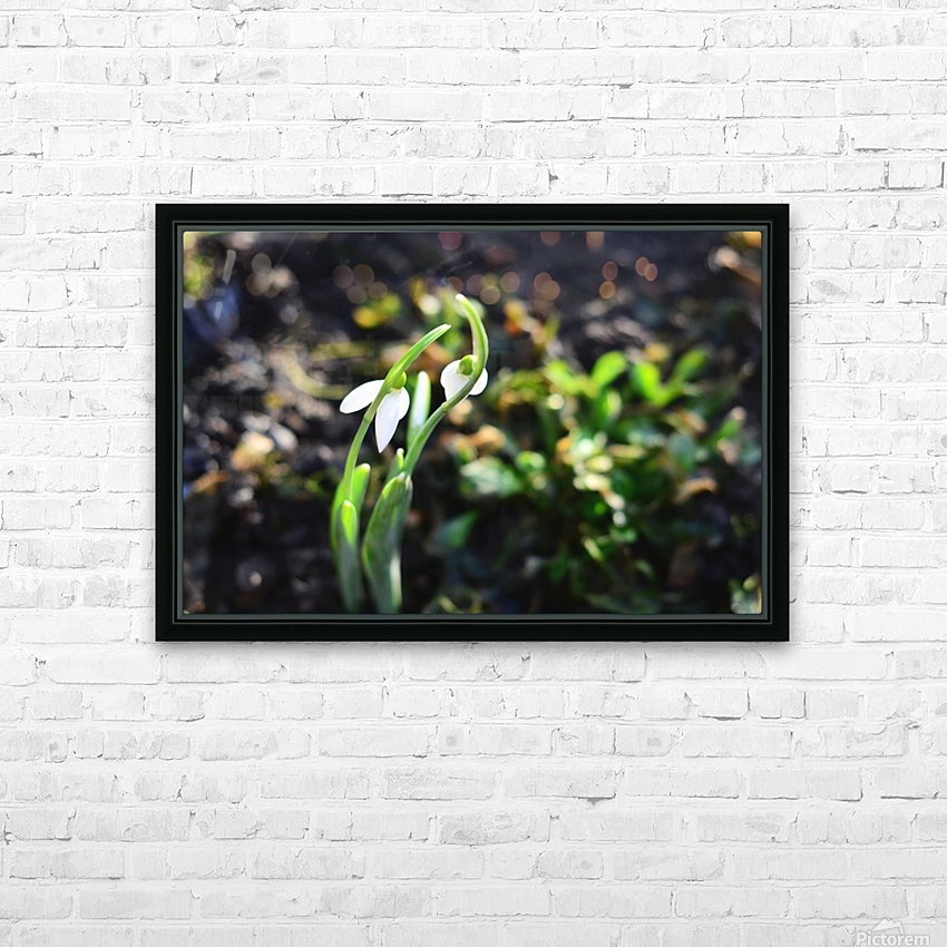 Snowdrop couple HD Sublimation Metal print with Decorating Float Frame (BOX)
