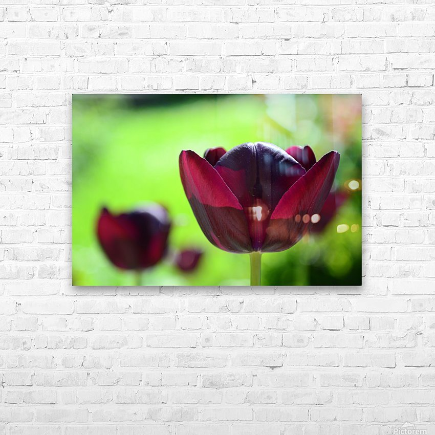 Solarised HD Sublimation Metal print with Decorating Float Frame (BOX)