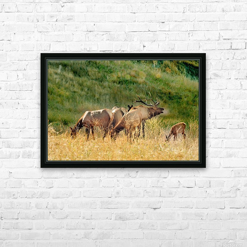 Family man Plus HD Sublimation Metal print with Decorating Float Frame (BOX)