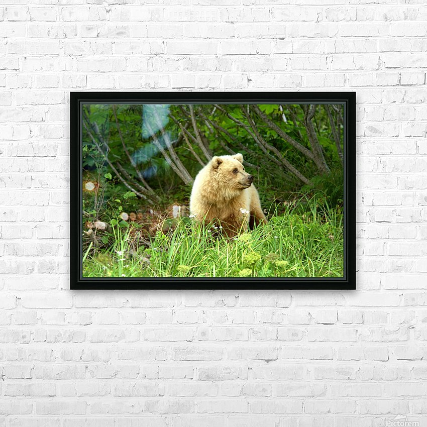 Two Year Old Grizzly HD Sublimation Metal print with Decorating Float Frame (BOX)