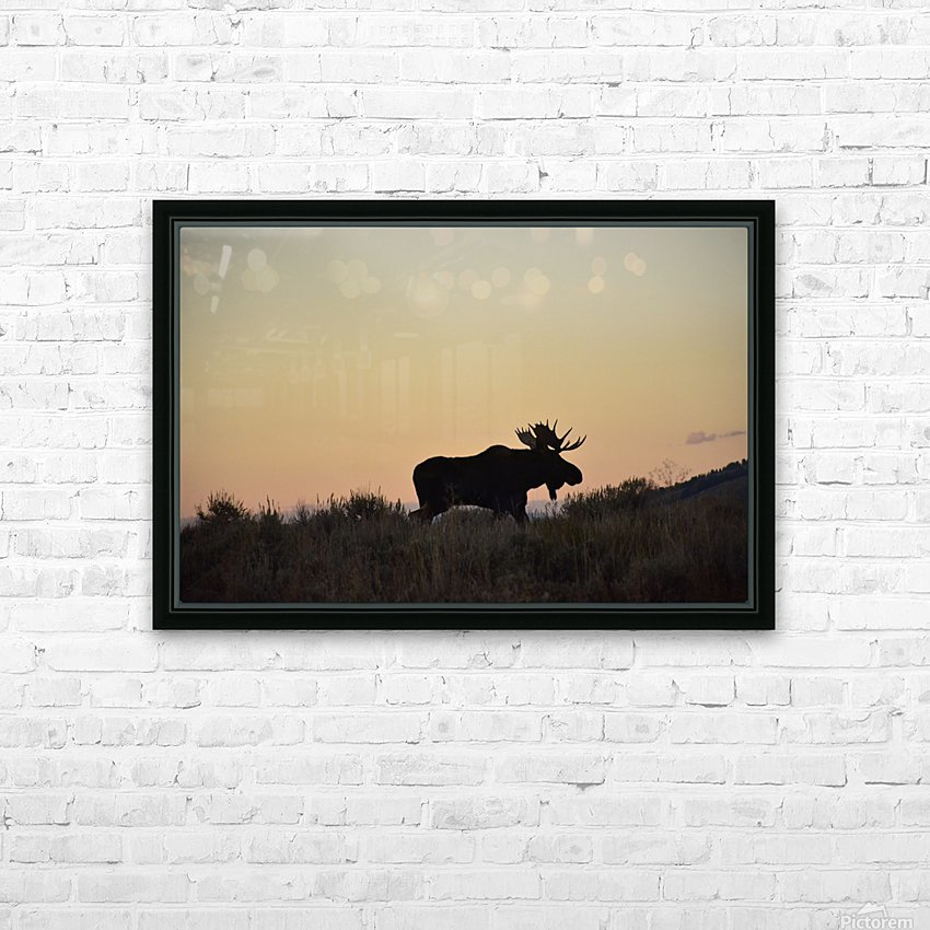 On the move HD Sublimation Metal print with Decorating Float Frame (BOX)
