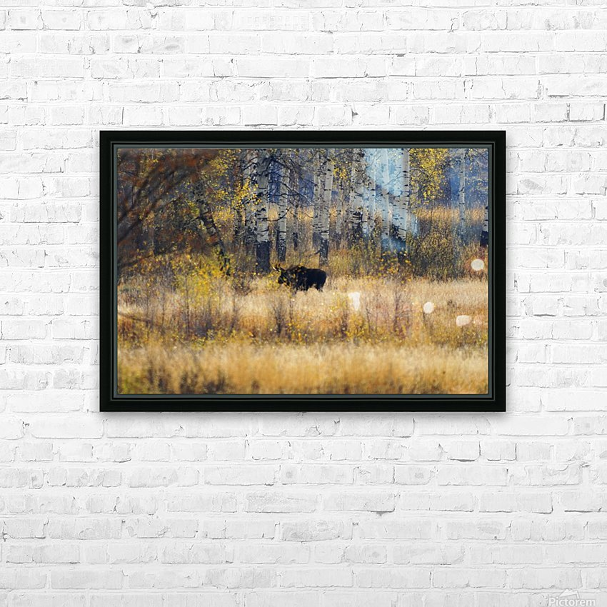 Early light in Gros Ventre HD Sublimation Metal print with Decorating Float Frame (BOX)