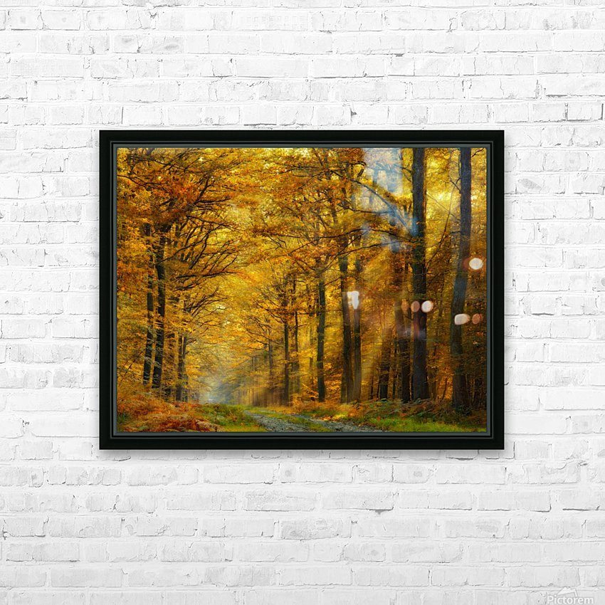 Enchanted Forest HD Sublimation Metal print with Decorating Float Frame (BOX)