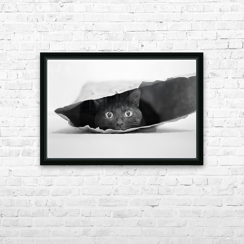 Cat in a bag HD Sublimation Metal print with Decorating Float Frame (BOX)
