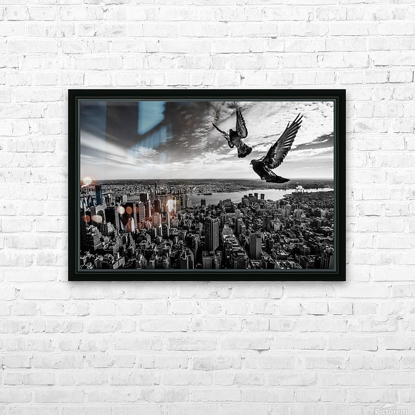 Pigeons on the Empire State Building HD Sublimation Metal print with Decorating Float Frame (BOX)