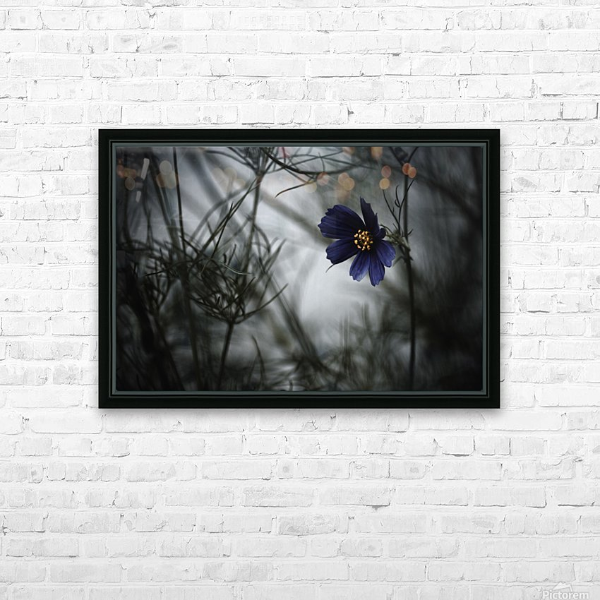 When Cosmos will be blue HD Sublimation Metal print with Decorating Float Frame (BOX)