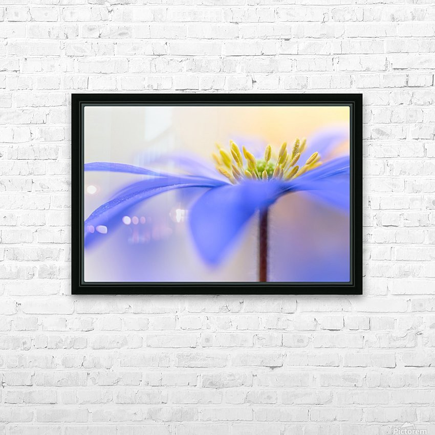 Pure ... HD Sublimation Metal print with Decorating Float Frame (BOX)