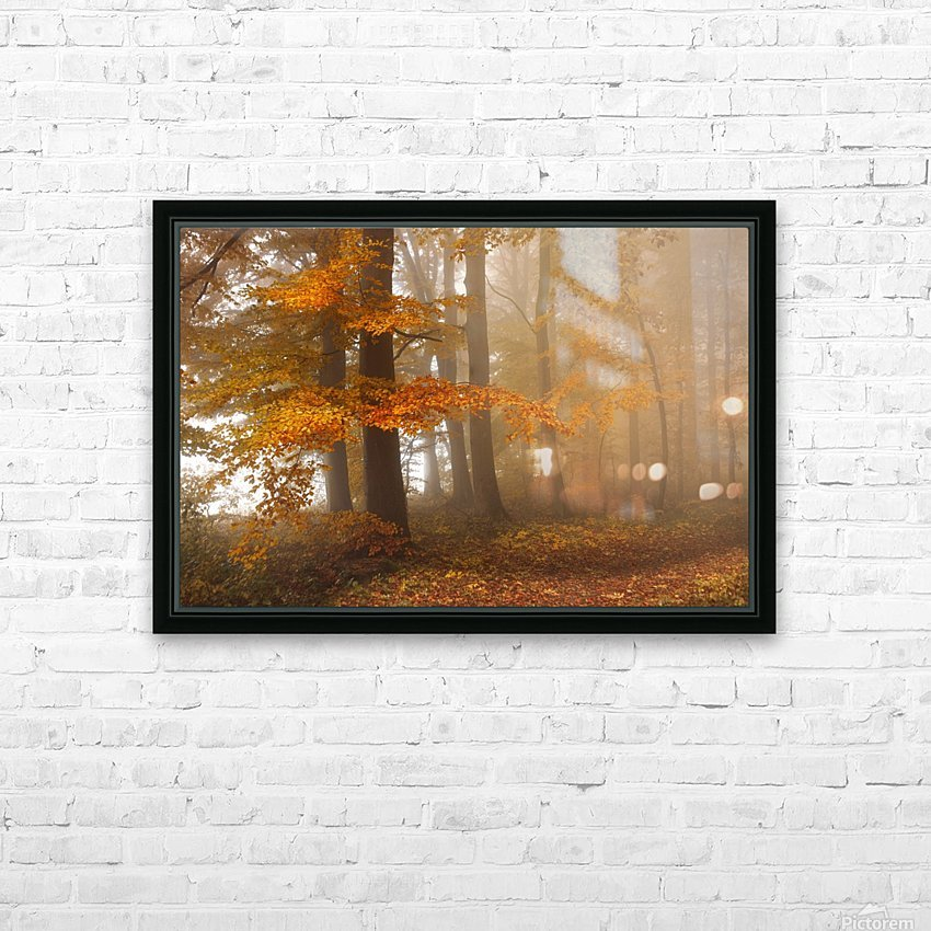Edge of the woods HD Sublimation Metal print with Decorating Float Frame (BOX)