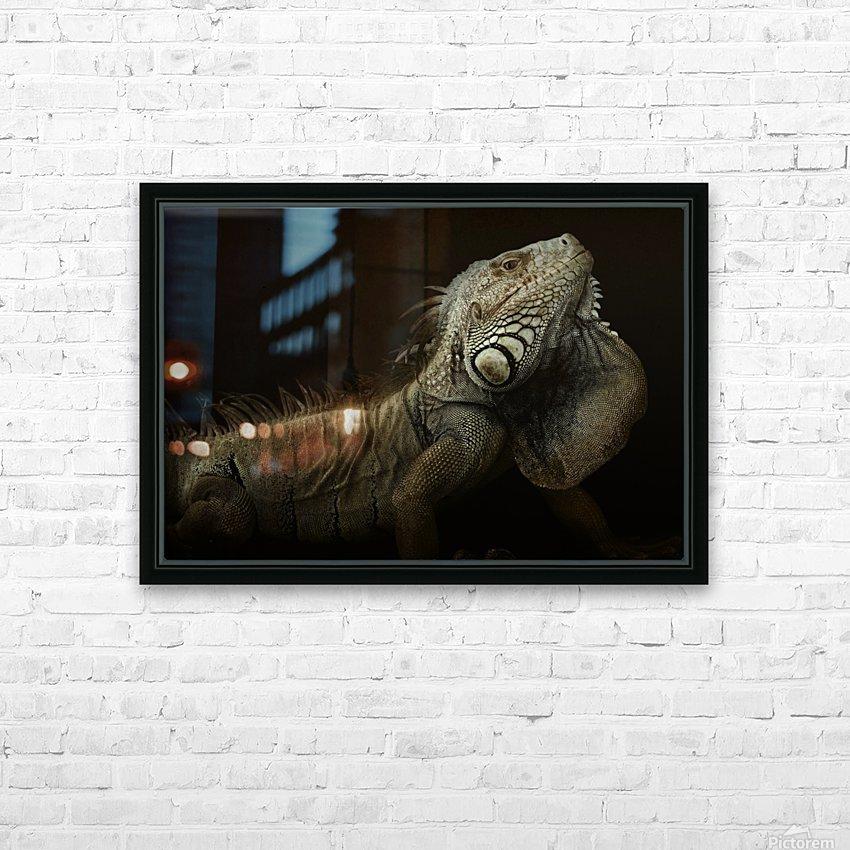 Iguana profile HD Sublimation Metal print with Decorating Float Frame (BOX)