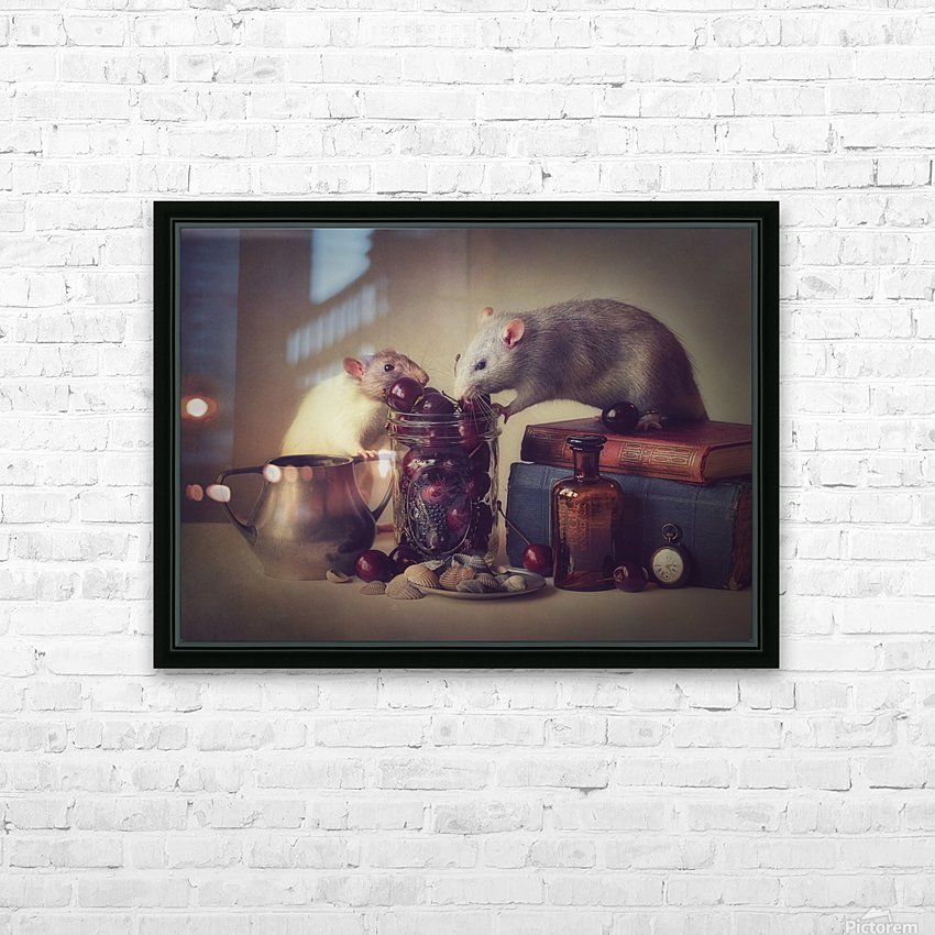 Snoozy and Jimmy HD Sublimation Metal print with Decorating Float Frame (BOX)