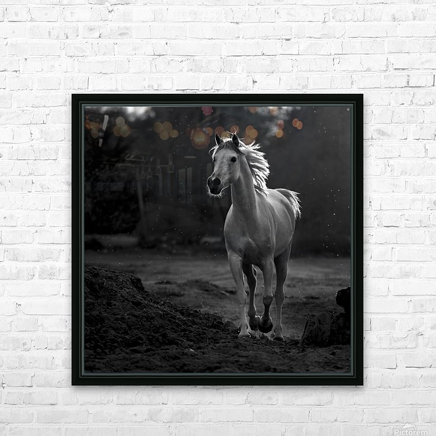 Coquetry HD Sublimation Metal print with Decorating Float Frame (BOX)