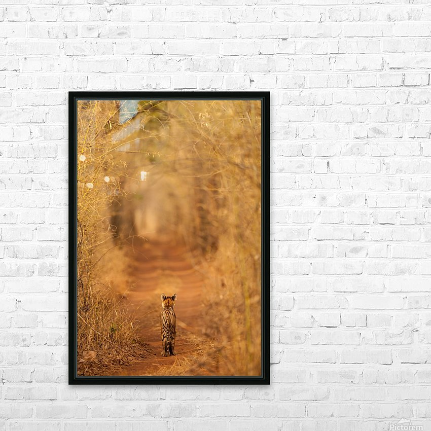 The Tiger in  the Tunnel HD Sublimation Metal print with Decorating Float Frame (BOX)