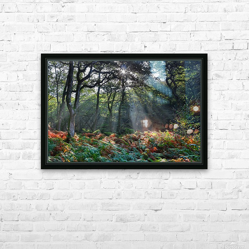 Dewerstone Woods HD Sublimation Metal print with Decorating Float Frame (BOX)