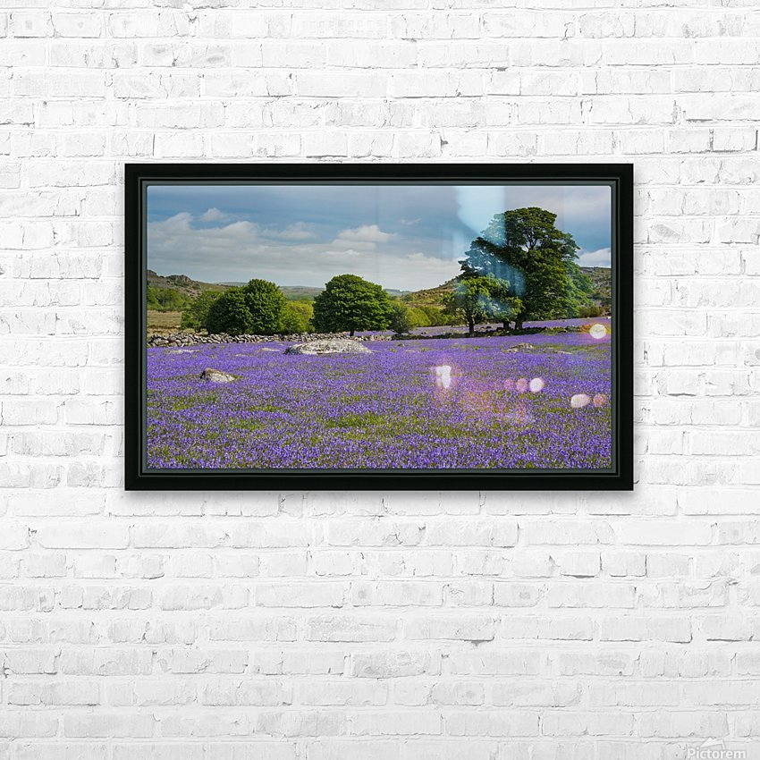 Emsworthy bluebells HD Sublimation Metal print with Decorating Float Frame (BOX)
