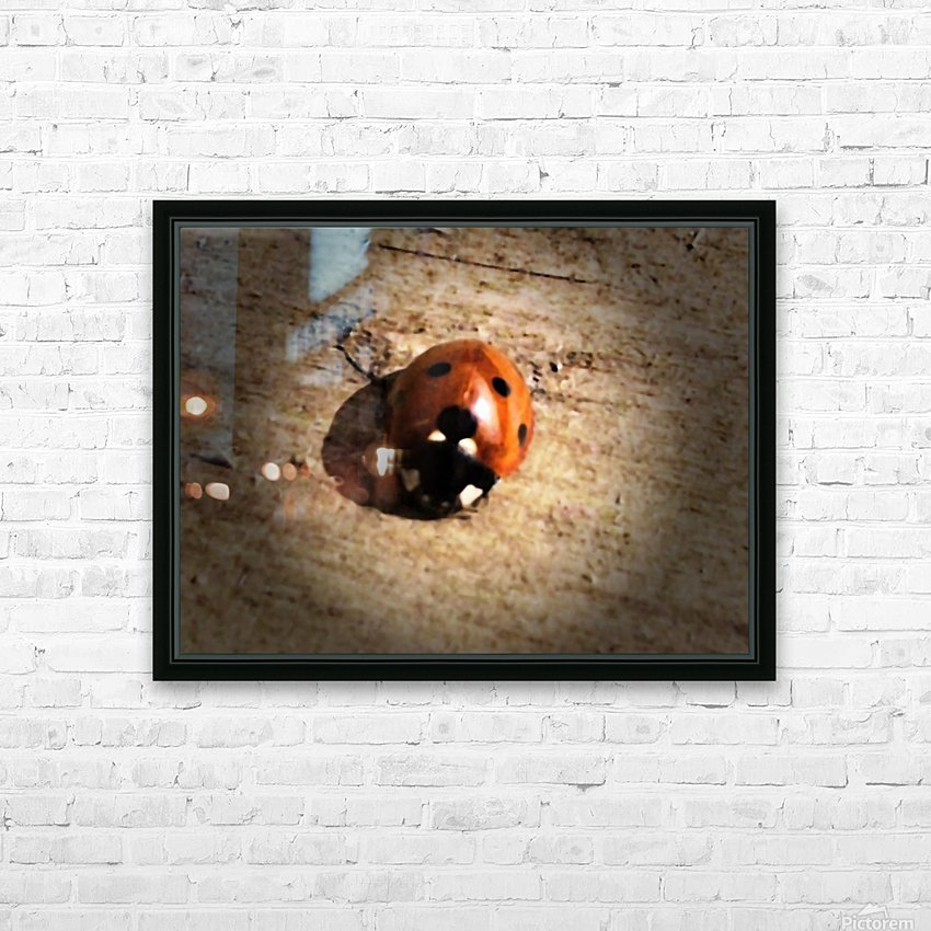 Lady Bird Bug HD Sublimation Metal print with Decorating Float Frame (BOX)