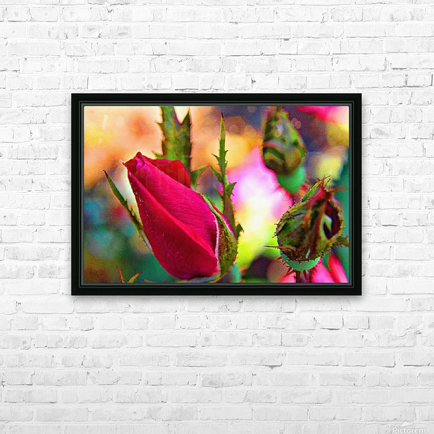 Rosebud HD Sublimation Metal print with Decorating Float Frame (BOX)