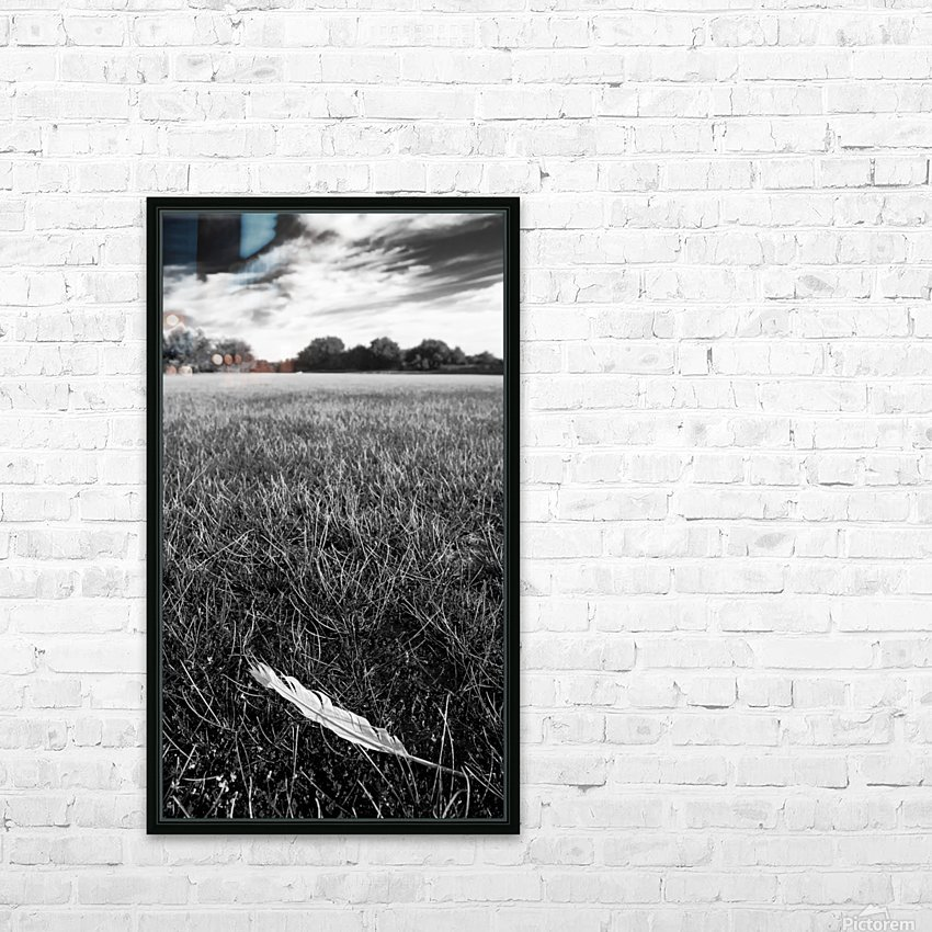 Feather in the Grass HD Sublimation Metal print with Decorating Float Frame (BOX)