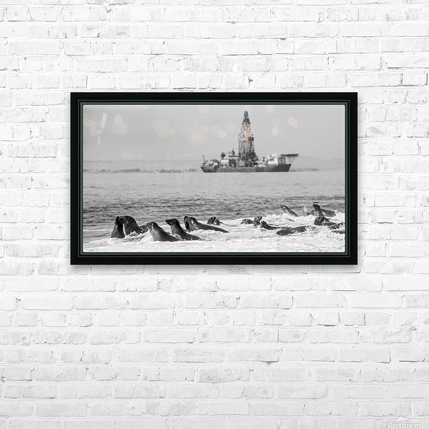 Seals by Oil Drill  HD Sublimation Metal print with Decorating Float Frame (BOX)