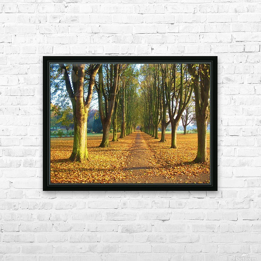 Autumnal Avenue HD Sublimation Metal print with Decorating Float Frame (BOX)