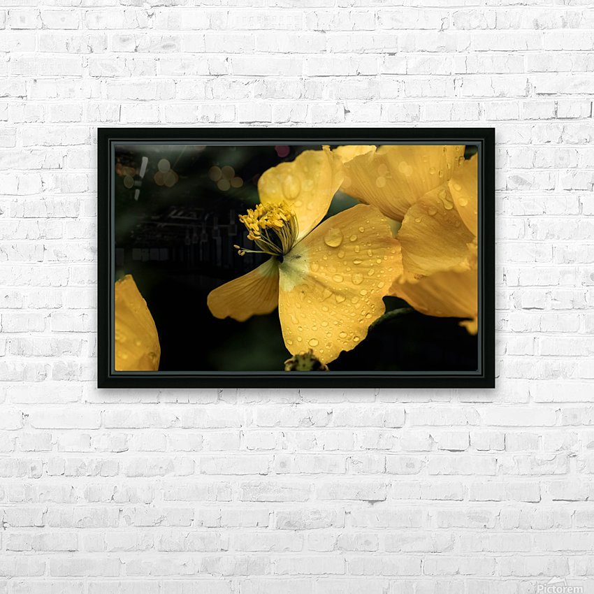 Butterfly Flower HD Sublimation Metal print with Decorating Float Frame (BOX)