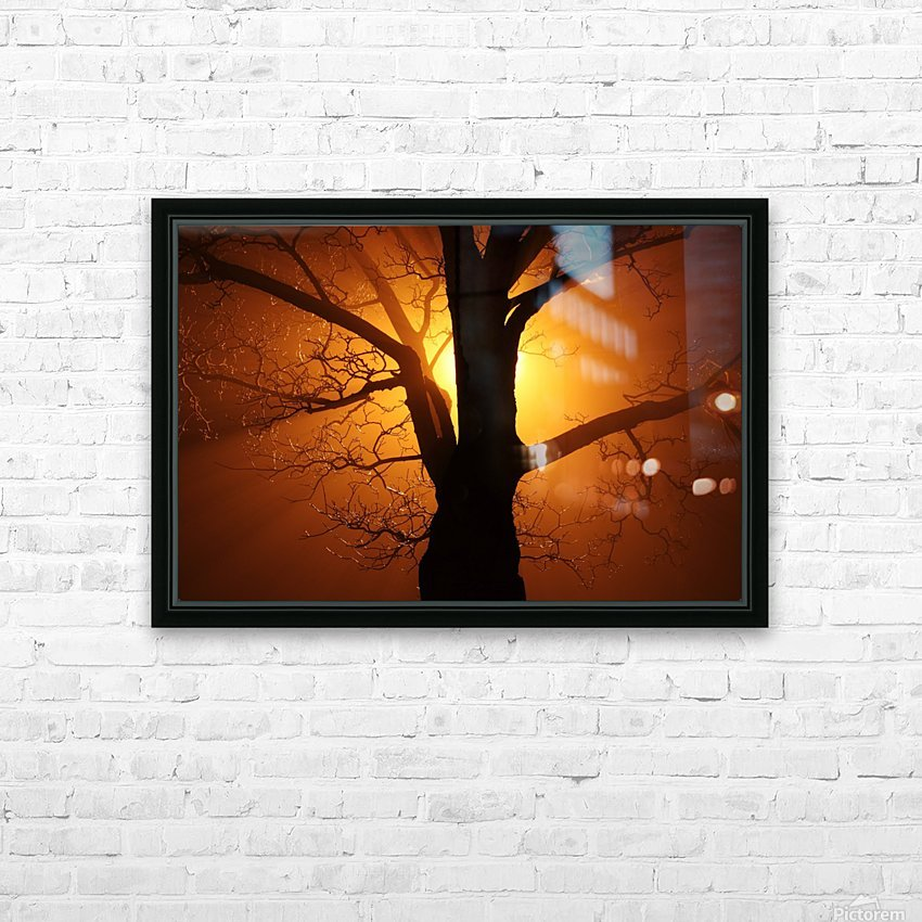 abstract sun tree HD Sublimation Metal print with Decorating Float Frame (BOX)