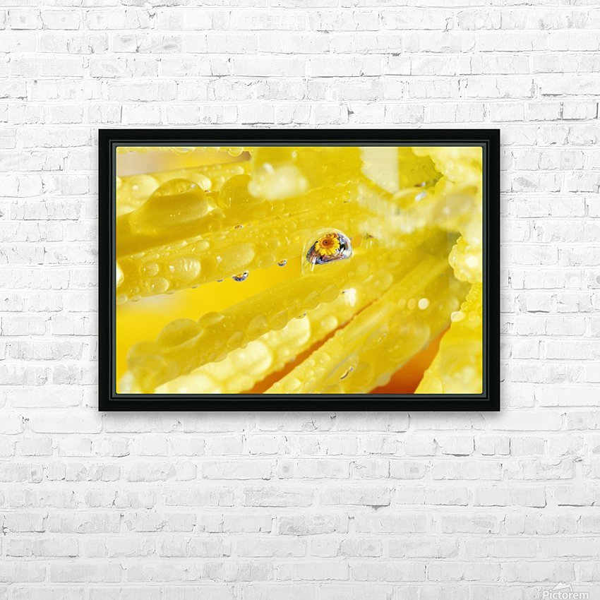 Yellow Flowers Reflected In Dew Drop HD Sublimation Metal print with Decorating Float Frame (BOX)