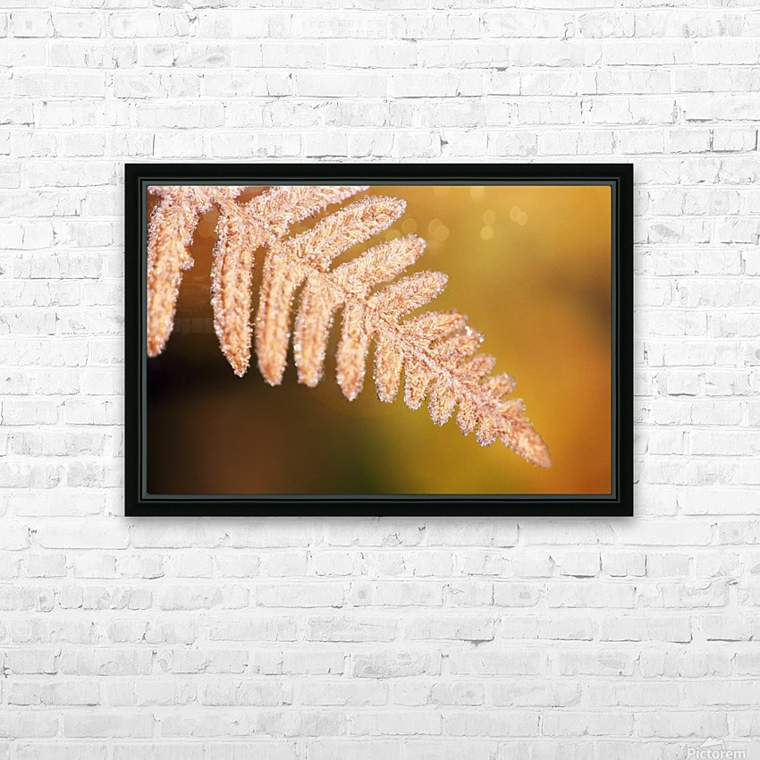 Frost On A Fern Leaf HD Sublimation Metal print with Decorating Float Frame (BOX)