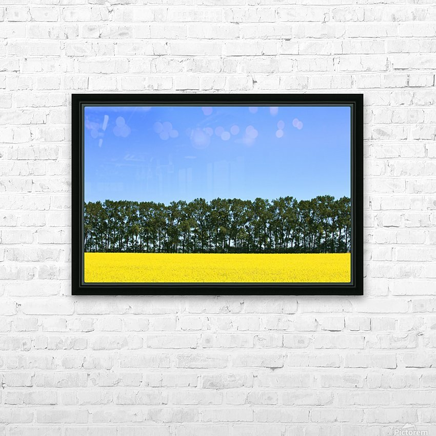 Canola Field And Trees HD Sublimation Metal print with Decorating Float Frame (BOX)