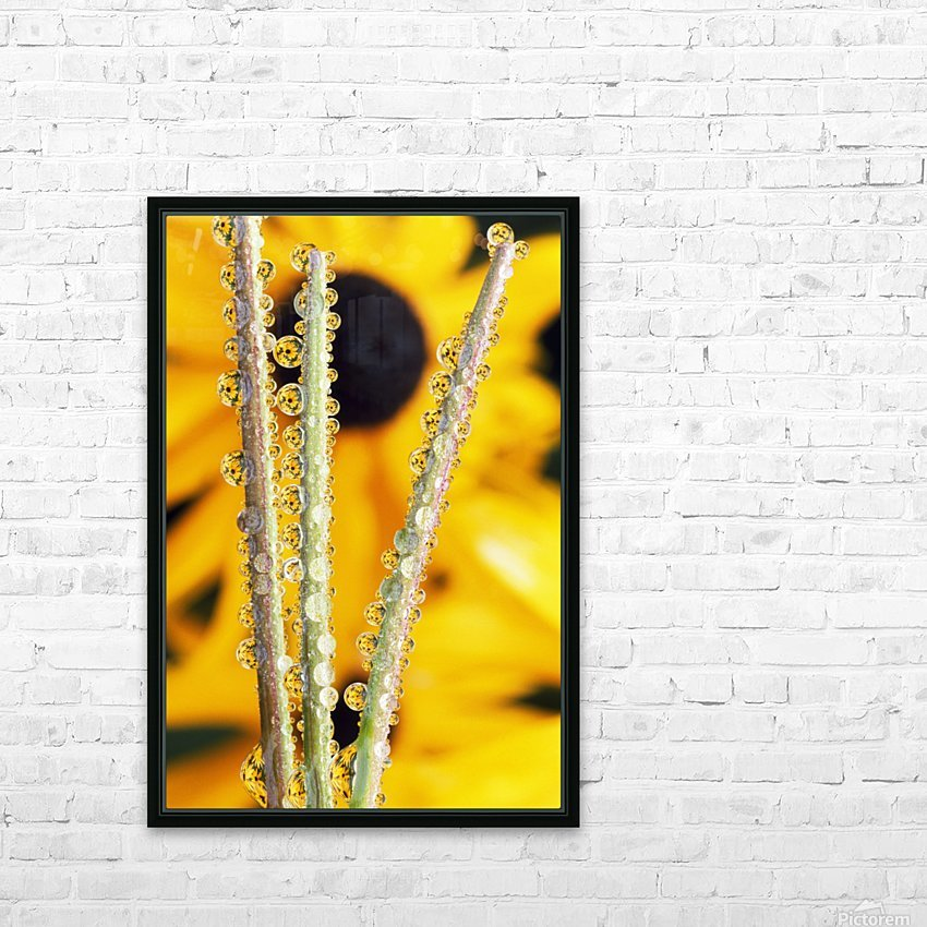 Reflection In Dew Drops HD Sublimation Metal print with Decorating Float Frame (BOX)