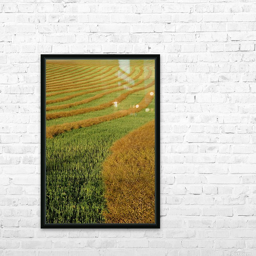 Rows Of Canola Windrows HD Sublimation Metal print with Decorating Float Frame (BOX)