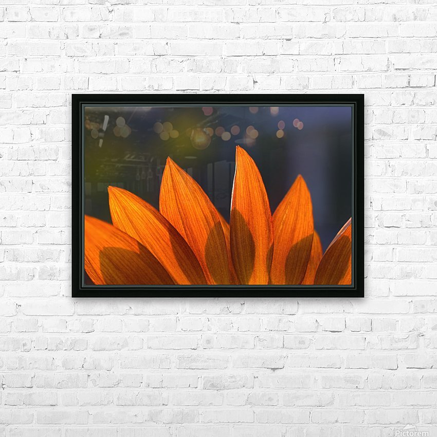 Sunflower Close-Up HD Sublimation Metal print with Decorating Float Frame (BOX)