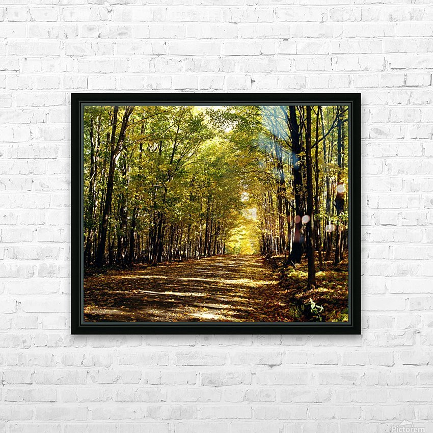 Tree Lined Road In Autumn HD Sublimation Metal print with Decorating Float Frame (BOX)