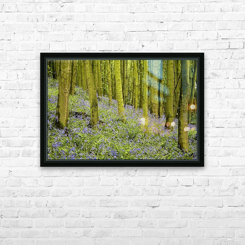 Bluebell Wood Impression HD Sublimation Metal print with Decorating Float Frame (BOX)