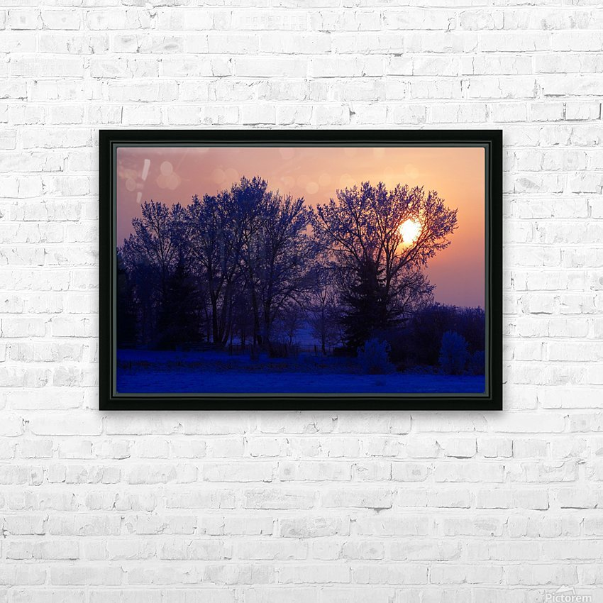 Sun Peeking Through Some Trees HD Sublimation Metal print with Decorating Float Frame (BOX)