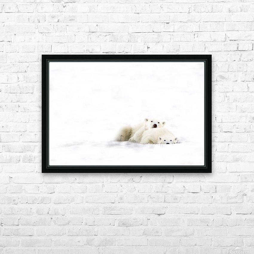 Two Polar Bears Snuggling HD Sublimation Metal print with Decorating Float Frame (BOX)