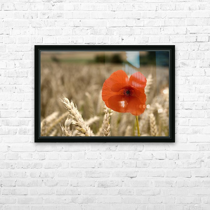 Red Flower In Field HD Sublimation Metal print with Decorating Float Frame (BOX)