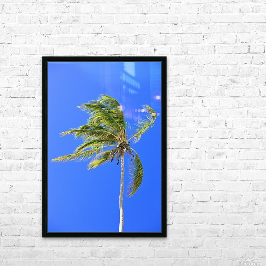 Palm Tree Against Clear Blue Sky HD Sublimation Metal print with Decorating Float Frame (BOX)