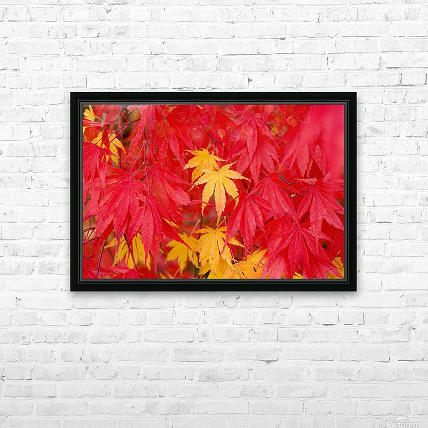 Close-Up Fall Leaves HD Sublimation Metal print with Decorating Float Frame (BOX)