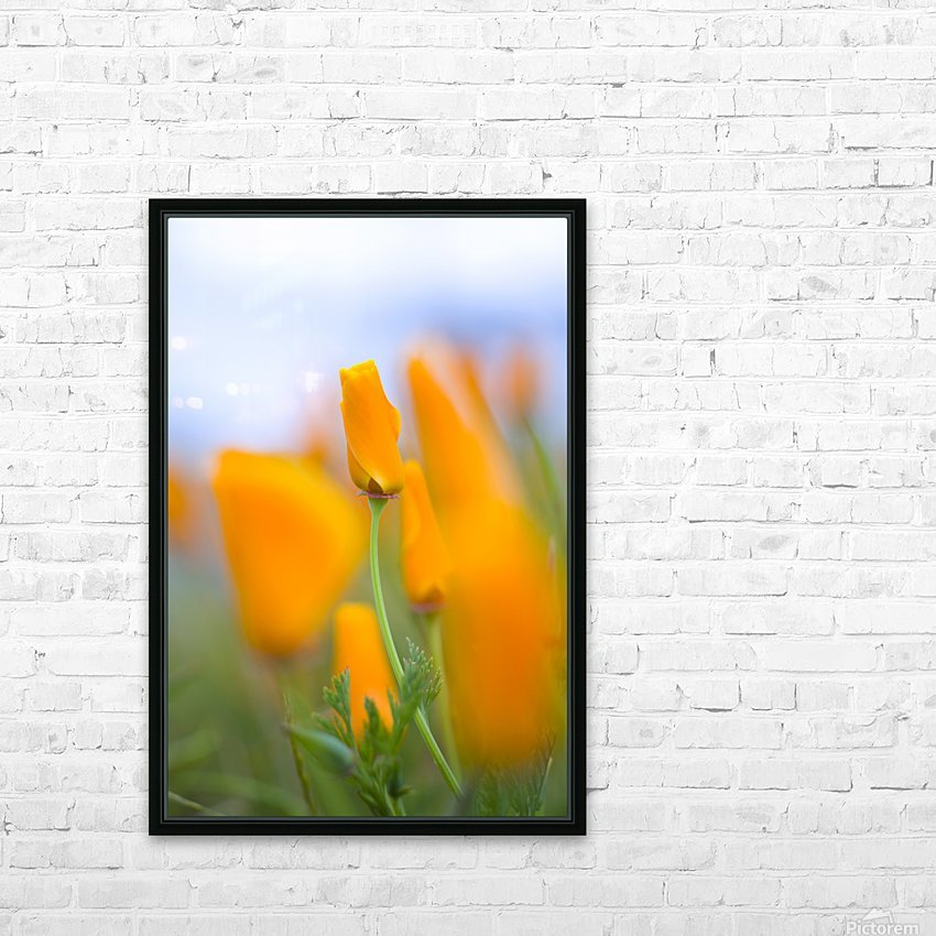 Furled Poppy HD Sublimation Metal print with Decorating Float Frame (BOX)