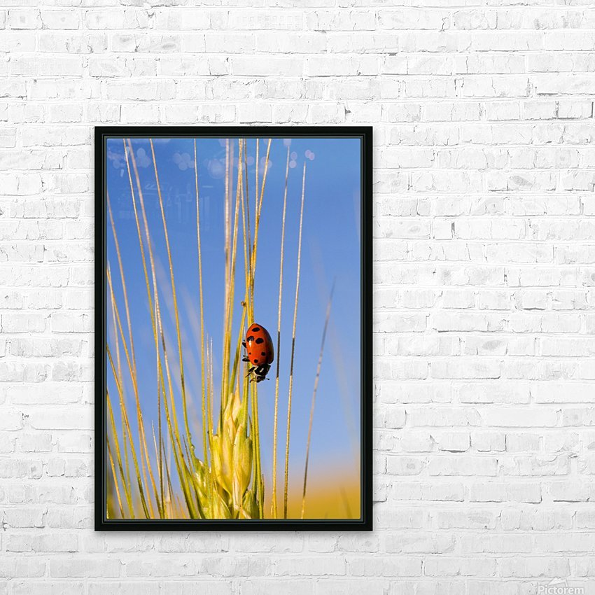 Lady Bug On A Plant HD Sublimation Metal print with Decorating Float Frame (BOX)