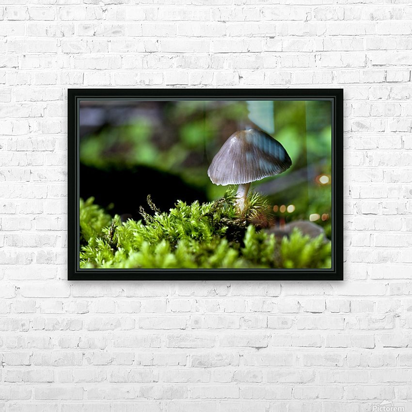 Closeup Of Mushroom HD Sublimation Metal print with Decorating Float Frame (BOX)