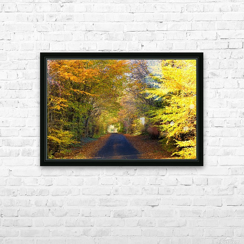 Rural Road, Argyll And Bute, Scotland HD Sublimation Metal print with Decorating Float Frame (BOX)