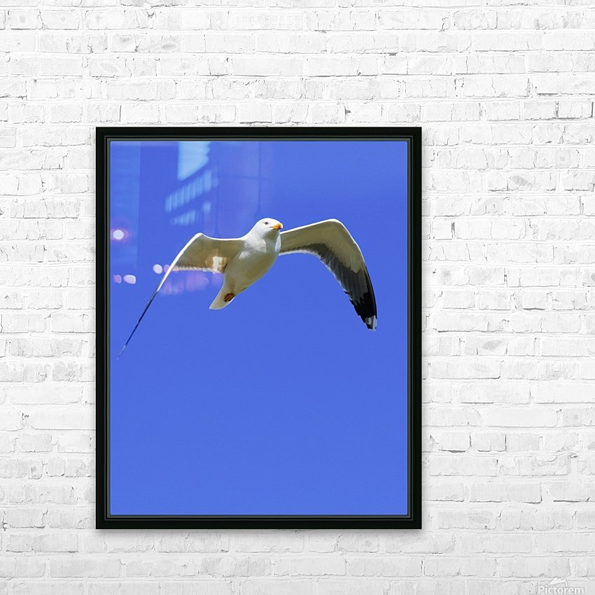 Seagull In Flight HD Sublimation Metal print with Decorating Float Frame (BOX)