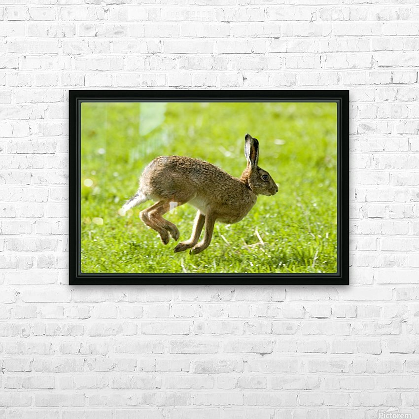 Hare Hopping In The Grass HD Sublimation Metal print with Decorating Float Frame (BOX)