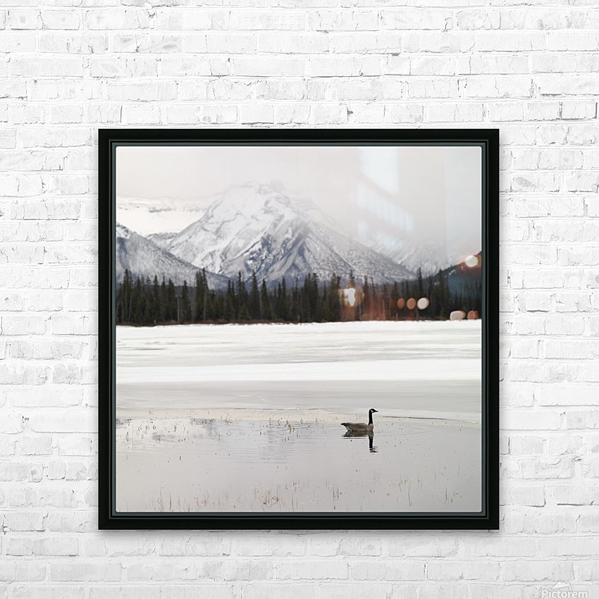 Winter Landscape, Banff National Park, Alberta, Canada HD Sublimation Metal print with Decorating Float Frame (BOX)